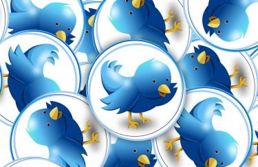Tvitomanija od 8. do 12. svibnja u Novom Vinodolskom