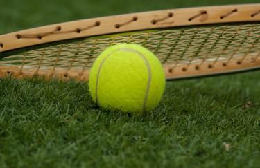 Wimbledon kroz infografiku